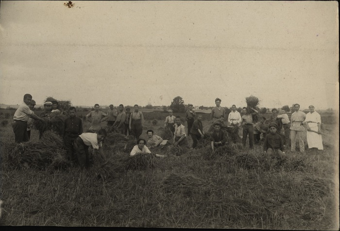На полевых работах, 1923 год.